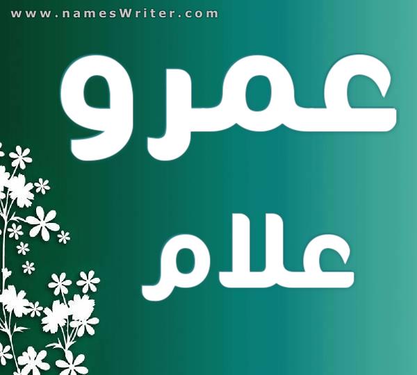 Amr allam