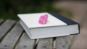 ❞ كتاب مولد طاقة مدى الحياة ❝  ⏤ مبرمج المستحيل