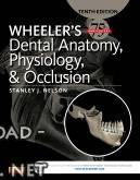 ❞ كتاب Wheeler's Dental Anatomy, Physiology and Occlusion  ❝