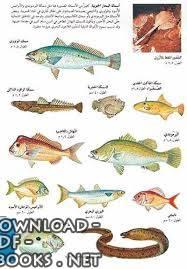 ❞ كتاب  الأسماك البحرية pdf ❝  ⏤ مؤلف غير معروف