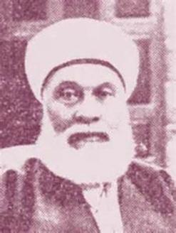 محمود شكري شهاب الدين