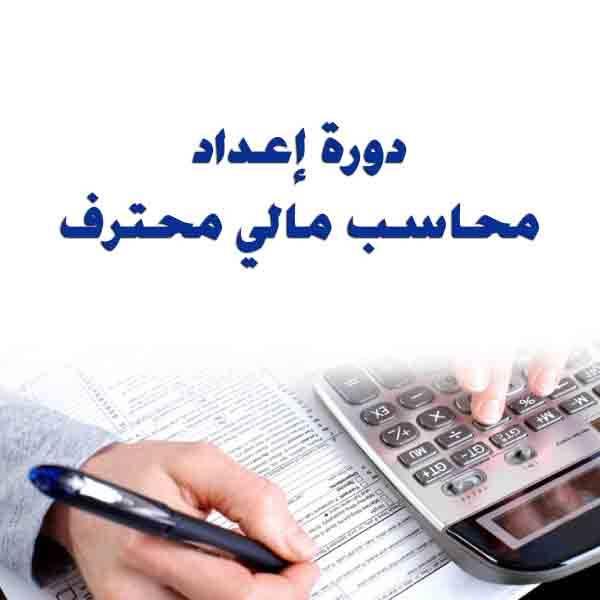 تحميل كتاب دورة إعداد محاسب مالي محترف