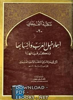 كتب أبو محمد الأسود الغندجاني