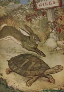 قراءة و تحميل كتاب The Tortoise And The Hare by Aesop PDF