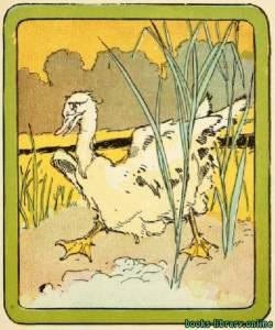 قراءة و تحميل كتاب The Ugly Duckling by Hans Christian Andersen PDF