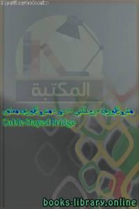 قراءة و تحميل كتاب مشروع كوبري + برج سكني 12 دور + مشروع كوبري معلق Cable Stayed Bridge PDF