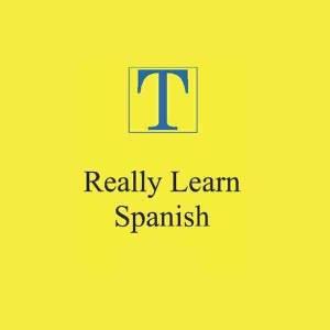 قراءة و تحميل كتاب  How to REALLY learn SPANISHكيف  تتعلم الاسبانية pdf  PDF